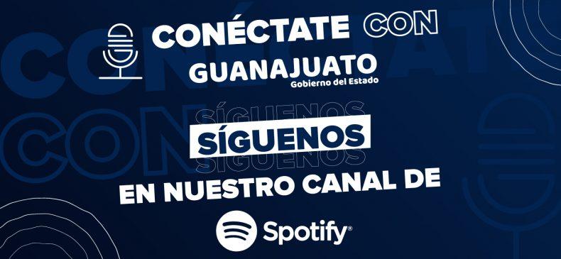 SpotifyVedaDependencias_1445x664